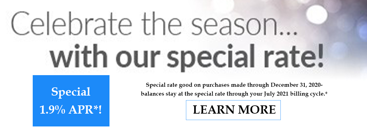 celebrate the season with a special rate on your visa credit card- learn more